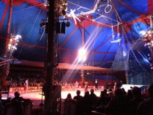 Trapez8-300x225 in Zirkus Krone in Berlin
