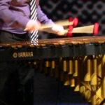 Schlagzeuginstrument