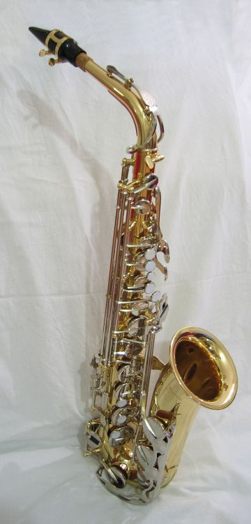 Saxophone Alto in Roland Kirk